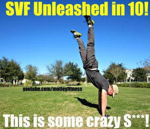 "Are you up for my  ""SVF Unleashed in 10! Challenge?"